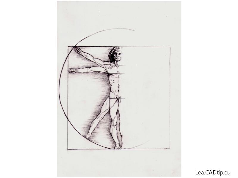 Vitruviánský muž